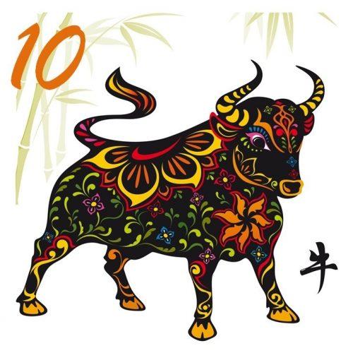 Noble Ox is Ten